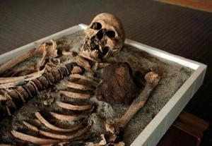 Uno degli scheletri di vampiri di 700 anni fa esposti al Museo di Storia di Sofia con il suo pezzo di ferro.  (Fotografia di Valentina Petrova, AP)