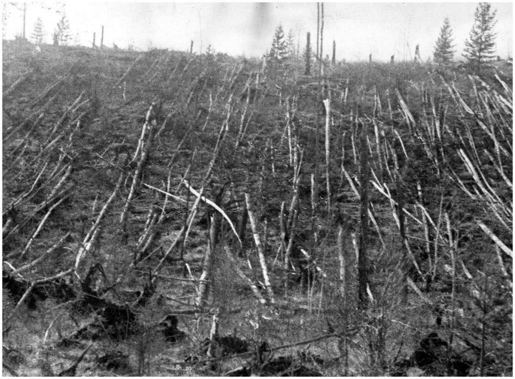 Foto del 1908 in cui si evince il livello distruttivo originato dall'evento.