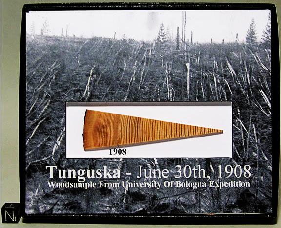 l'evento Tunguska registrato dalle poche piante che riuscirono a sopravvivere all'evento.