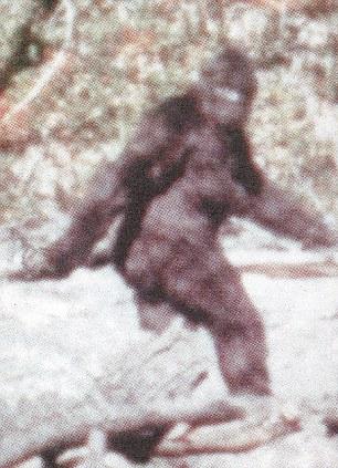 La fotografia – molto controversa – è stata scattata in California nel 1967.